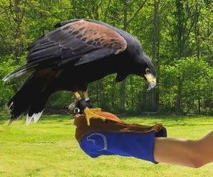 驯鹰手套 - 实用又时尚