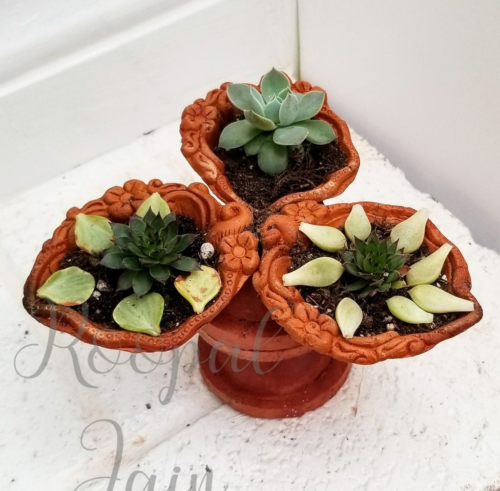 Picture of Upclycled Diya Planter
