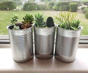 Upcycled Succulent Planters - Trash to Treasure