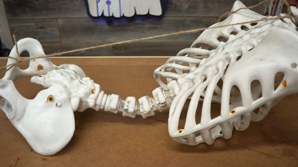 Picture of Bend Your Skeleton's Spine