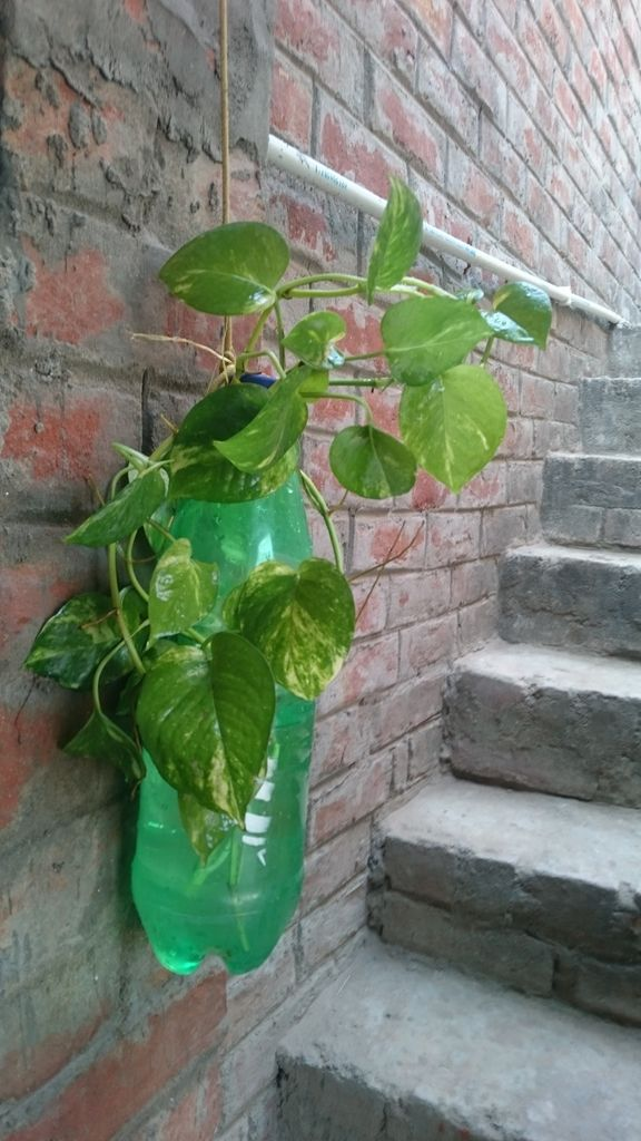 Picture of World's Cheapest Air Purifier by Reusing Plastic Bottles