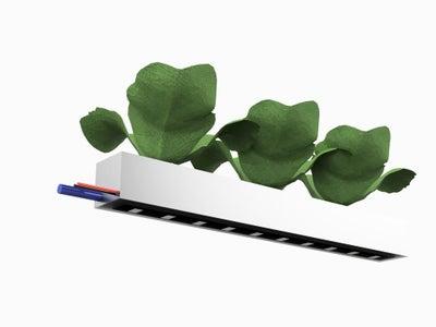 Plant Trays X18