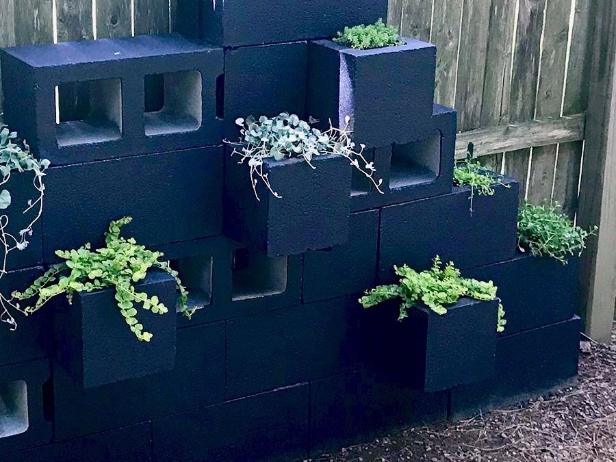 Picture of Add Plants to the Cinder Block Planters: