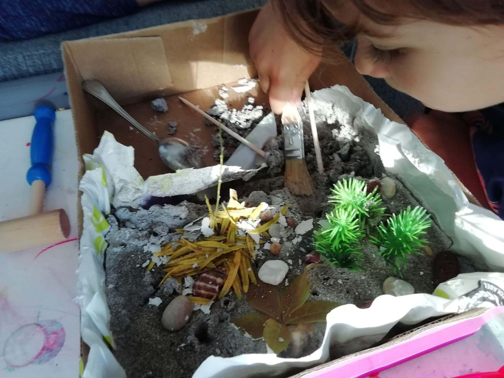 Picture of Excavation Kit (educational, DIY, for Kids)