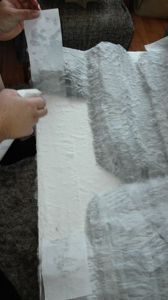 Picture of Covering the Whole Terrain With Toilet Paper.