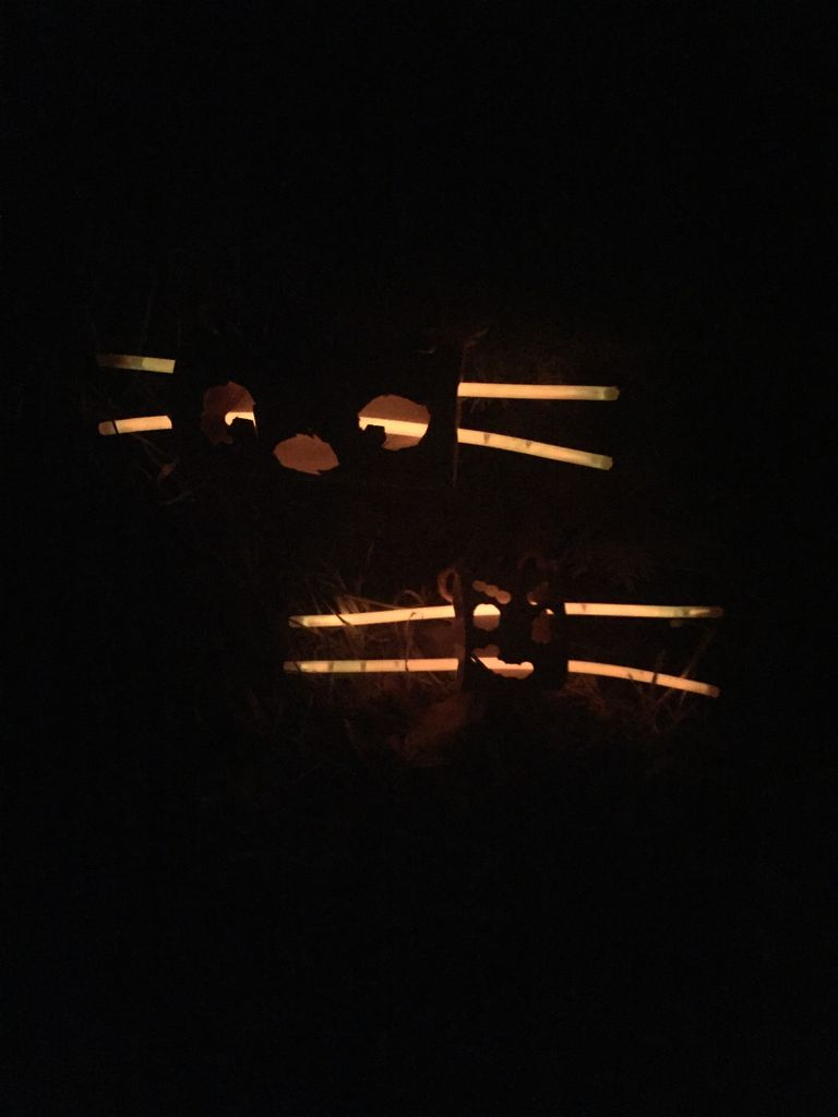 Picture of Spooky Glow in the Dark Spider Decor( Outdoor)