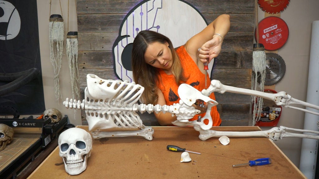 Picture of Disassemble Your Skeleton