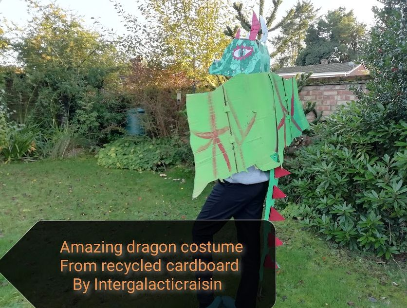 Picture of Amazing Dragon Costume From Recycled Cardboard