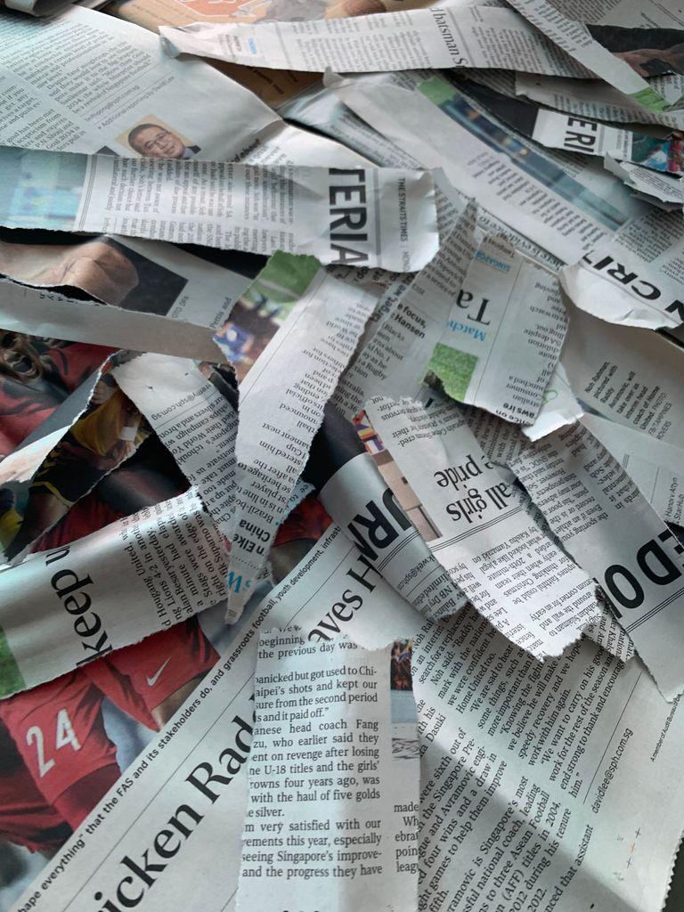 Picture of The Paper Mâché