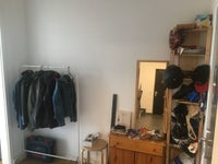 Custom Wardrobe / Cloakroom