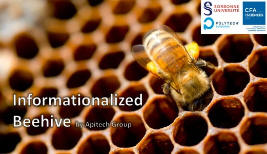 Informationalized Beehives
