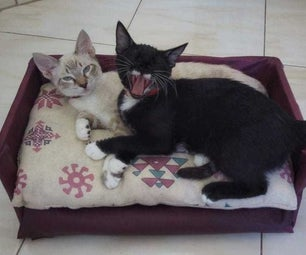 Cat Couch/Sofa
