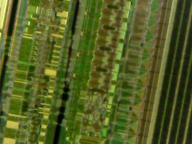 Picture of Pictures Taken With Microscope