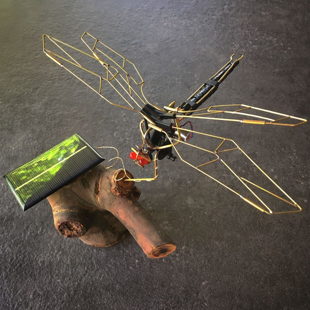 Picture of Flapping Dragonfly BEAM Robot From a Broken RC Toy