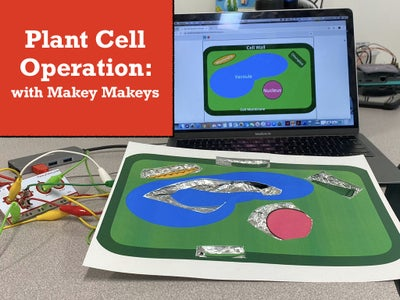 Plant Cell Operation With Makey Makey