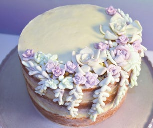 Layered Carrot Cake With Edible Succulents