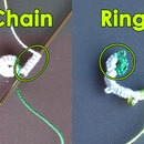 BASIC FORMS: CHAINS AND RINGS