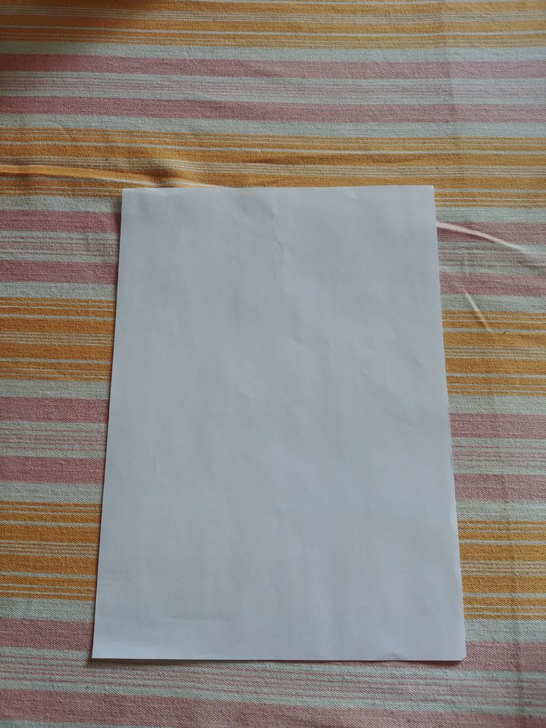 Picture of 2-in-1 Paper Head Apparel/Personal Watercraft