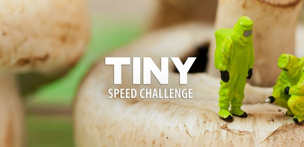 Tiny Speed Challenge