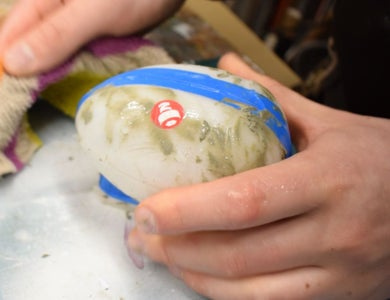 Mould-Making and Casting