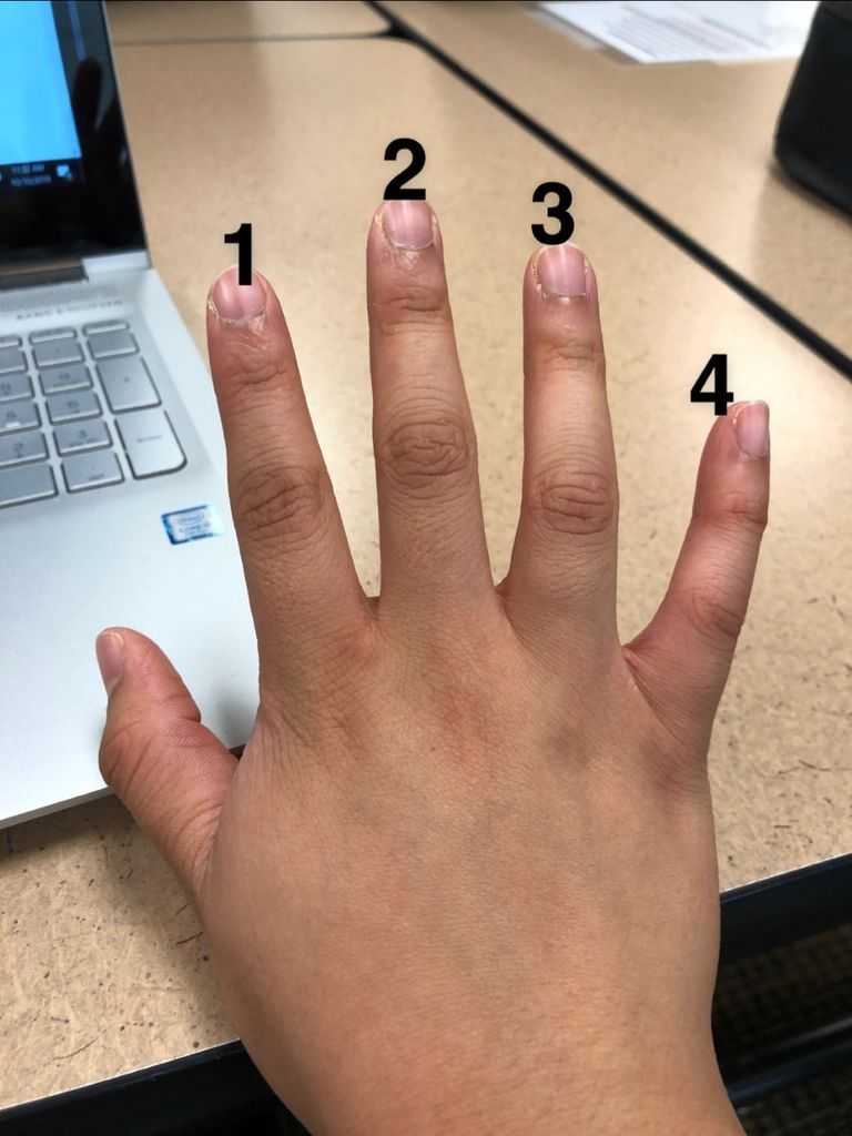 Picture of Learn the Finger Names