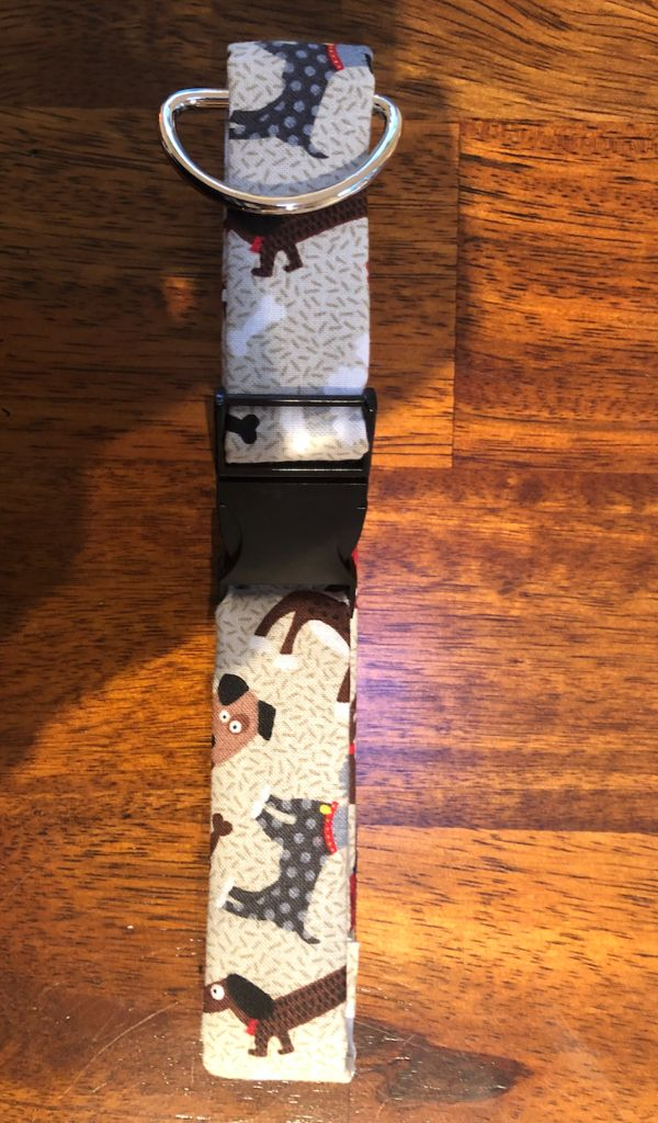Picture of THE LEASH AND COLLAR