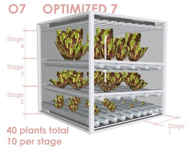 O7 - Optimized 7 Day Lettuce Supply Cycle