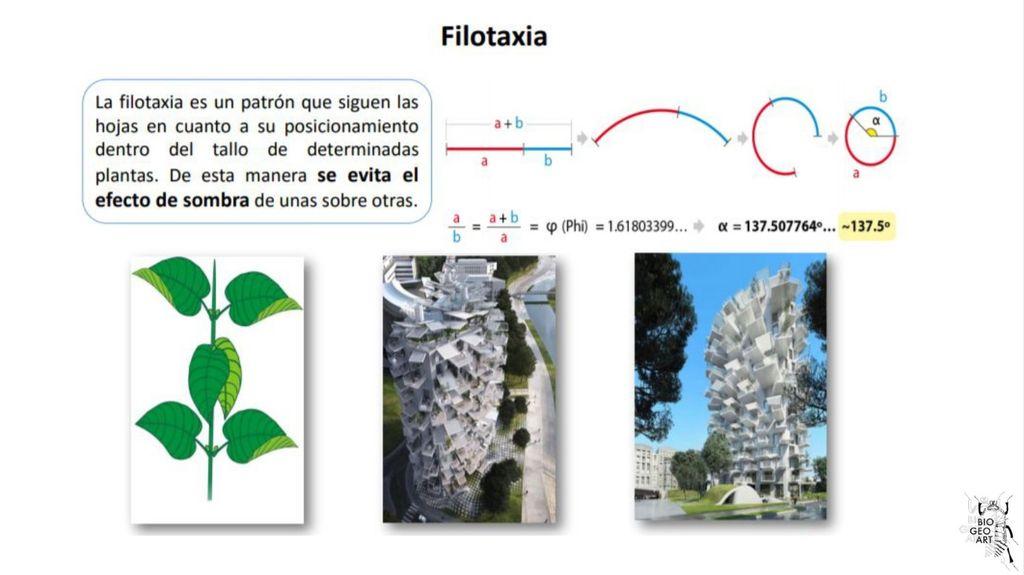 Picture of Realización Y Logística Del Taller