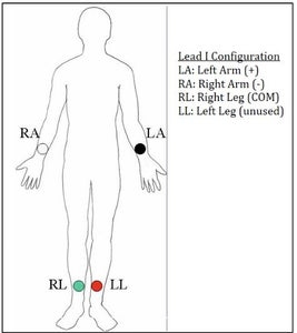 Test Circuit Using Human Subject