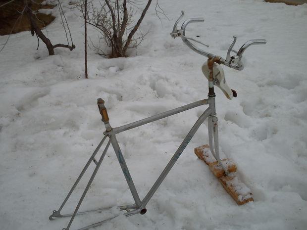 reindeer side.JPG