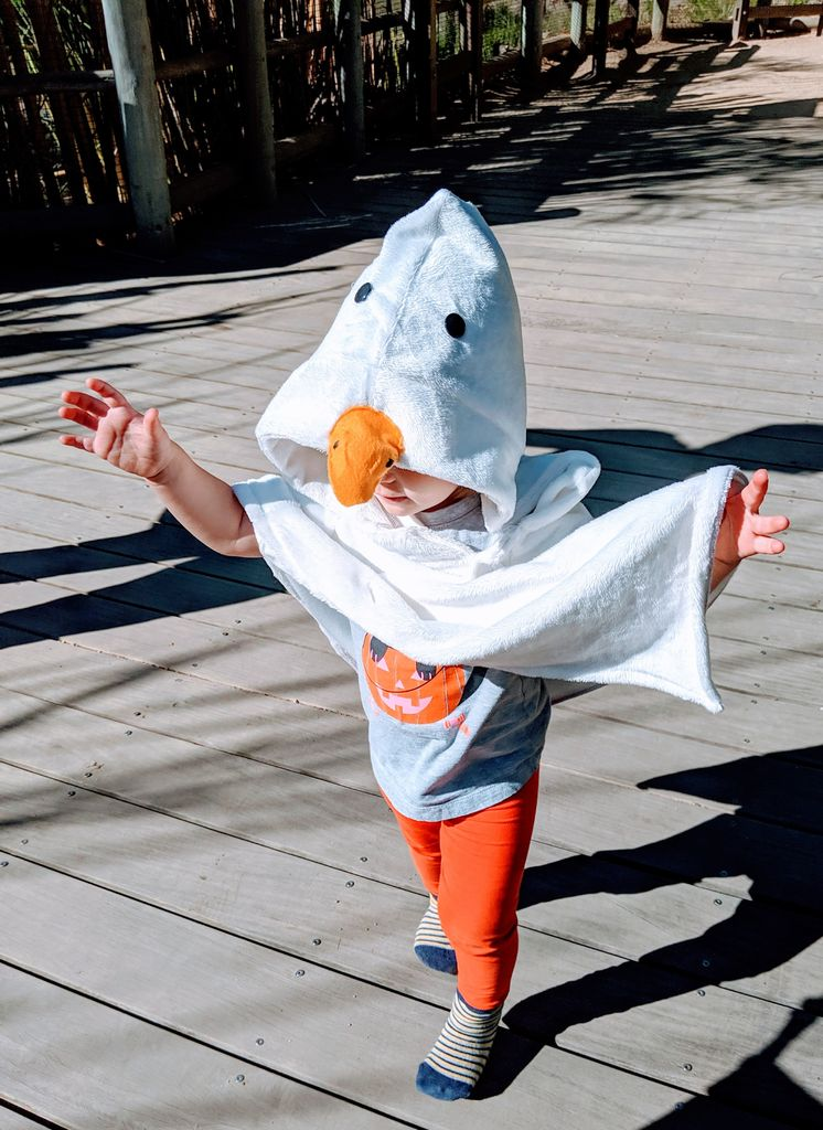 Picture of Untitled Toddler Game! Horrible Goose Costume for Kids