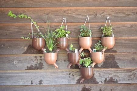 添加植物!