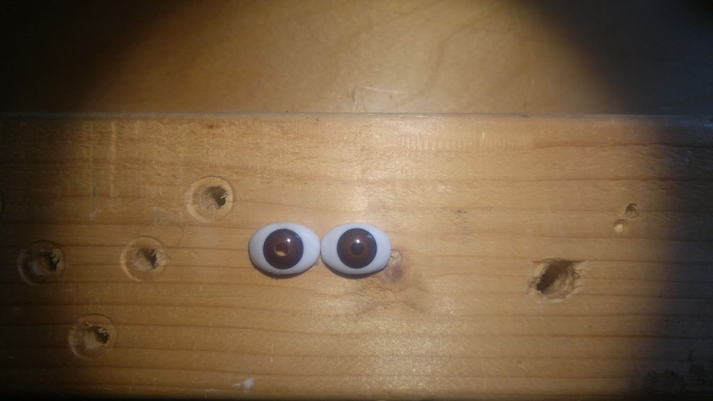 Picture of Making the Laser Eyes: Preparing the Eyes
