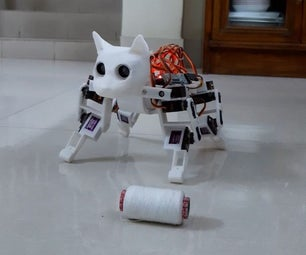 狮子座:宠物猫