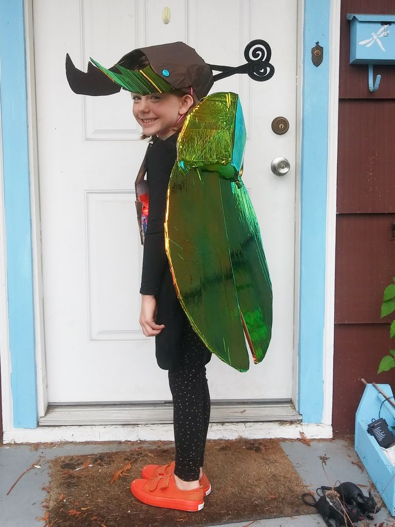 Picture of Cardboard Beetle Costume