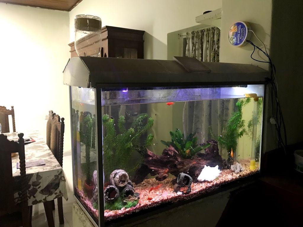 Picture of Automated Aquarium Control (IoT)