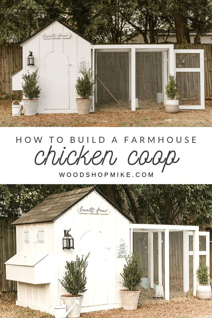 Picture of How to Build a Chicken Coop