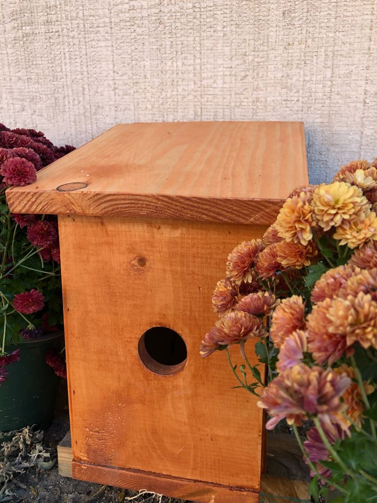 Picture of House Finch Birdhouse