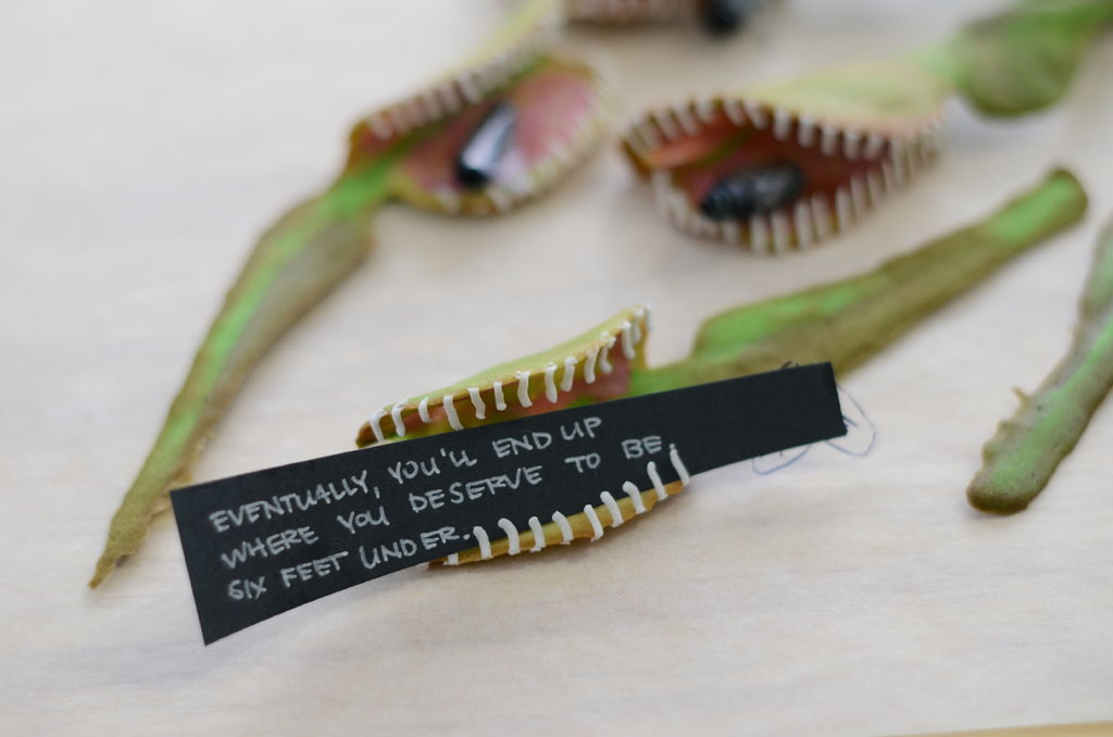Picture of Venus Fly Trap MisFortune Cookies