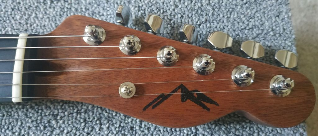 Picture of Building a Guitar: Telecaster Thinline