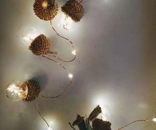Tiny Acorn Light Bulbs!!!