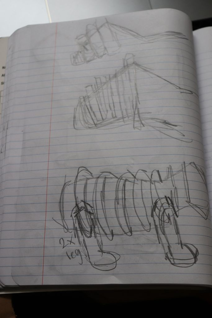 Picture of  Sketch the Animals and Dissect Main Aspects