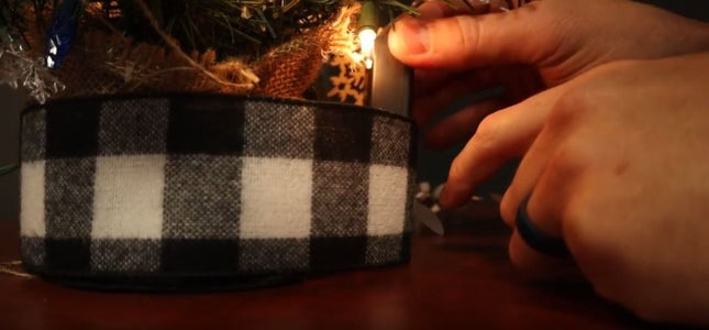 Lighting the Tree