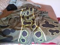 Frog Skins