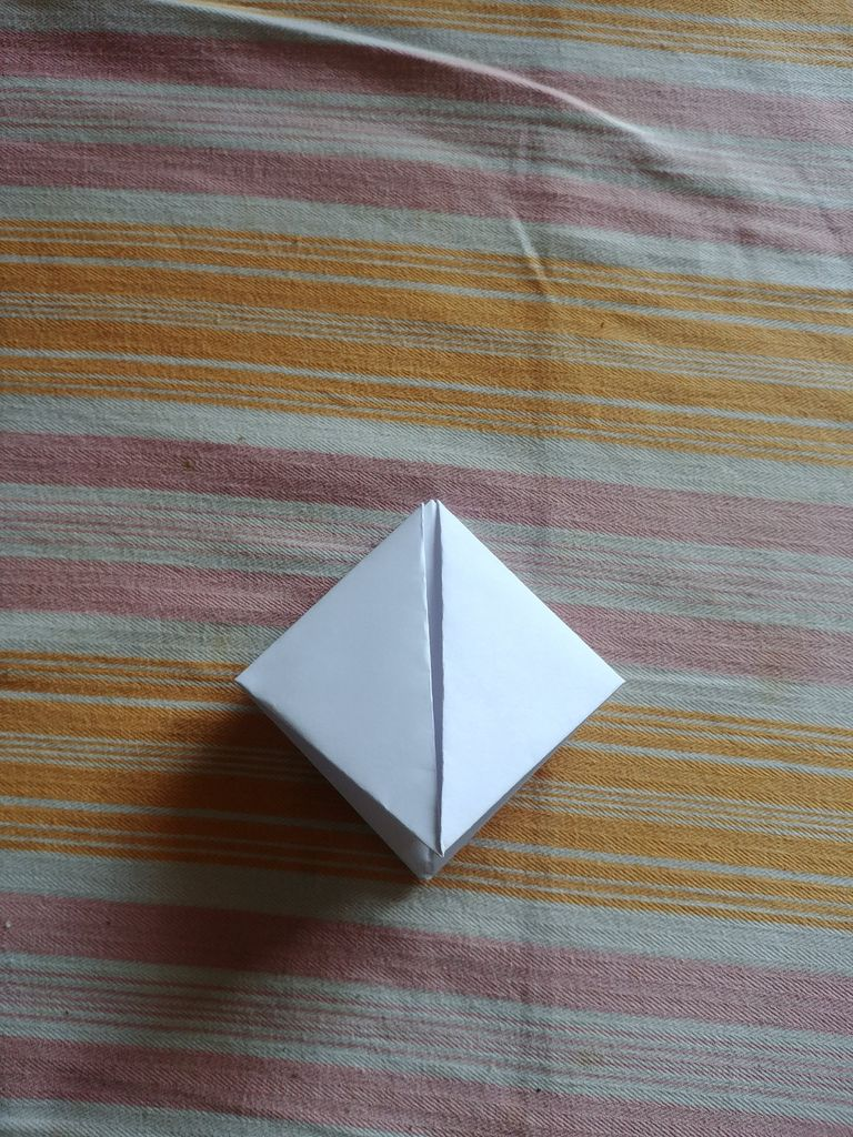 Picture of Fold the Edges Towards Each Other Again.
