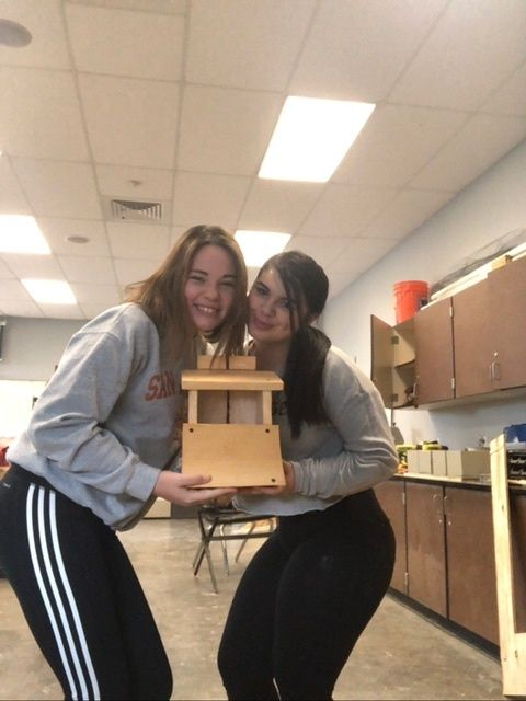 Picture of Building a Bird House