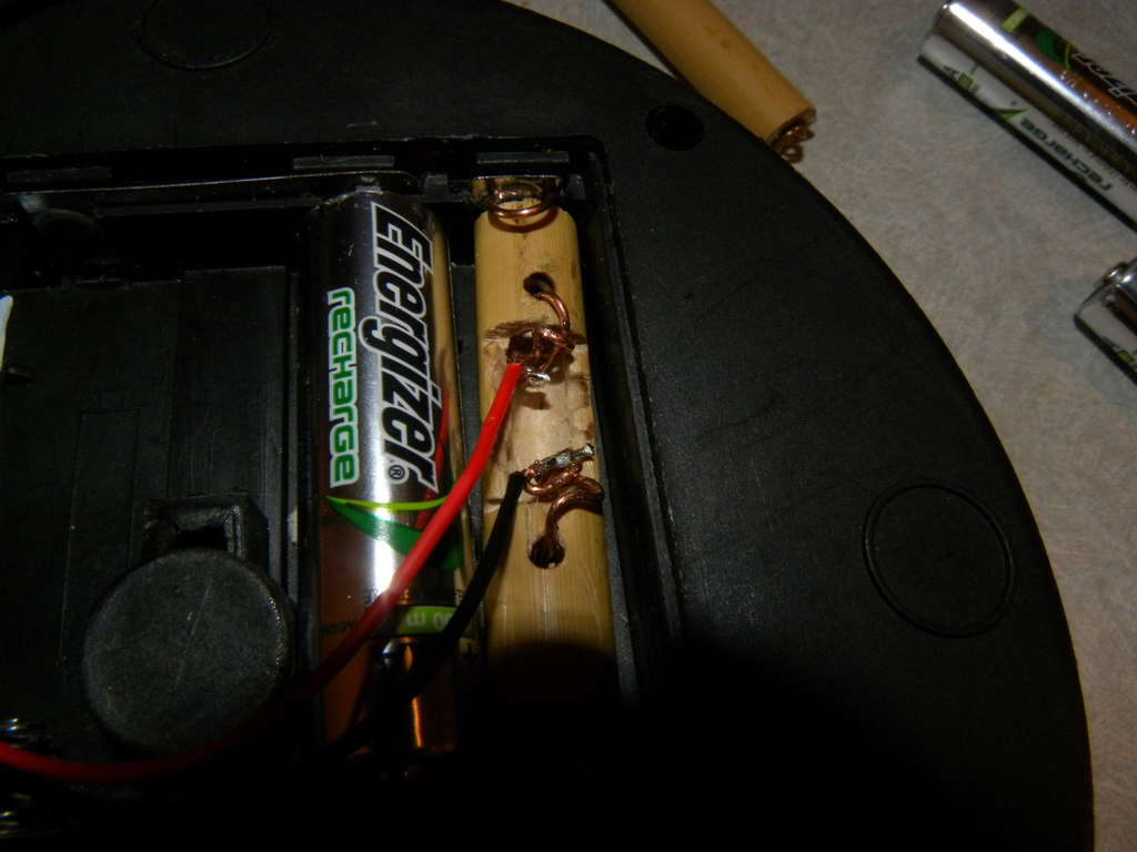 """Picture of Bamboo """"Batteries"""""""