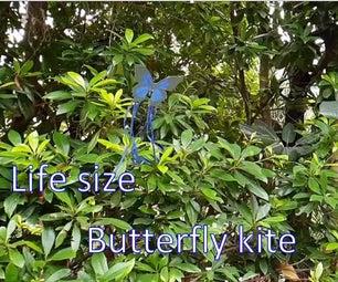 真人大小的蝴蝶风筝