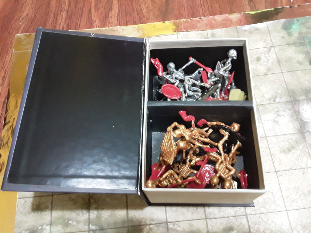 Picture of Carrying Box.