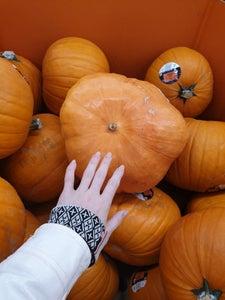 Prep the Pumpkin